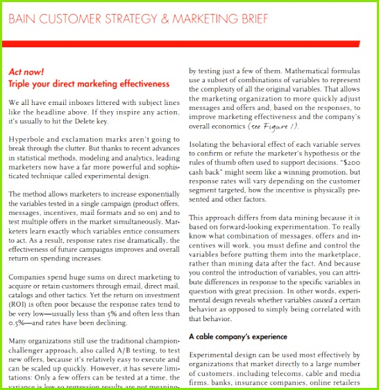 Customer Strategy Marketing Brief