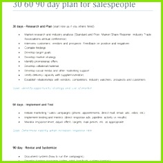 90 Day Business Plan Template For Interview 90 Day Business Plan Template for Interview