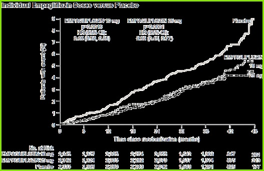 Figure 1 Time to occurrence of cardiovascular in the EMPA REG OUT E study