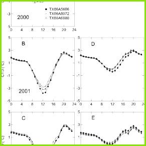 Diurnal canopy temperature depression CTD trends for three closely wheat Triticum aestivum