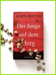 Rezension Roman Der Junge auf dem Berg von John Boyne