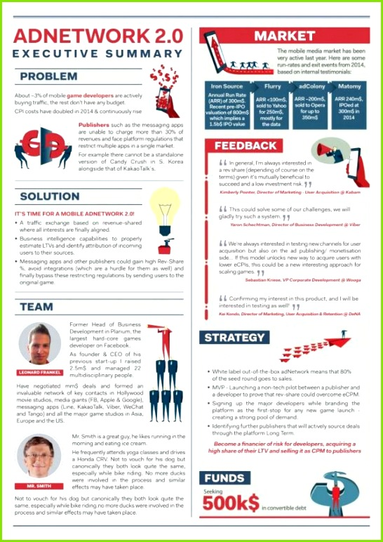 Business Executive Summary Template Unique Executive Resume Examples