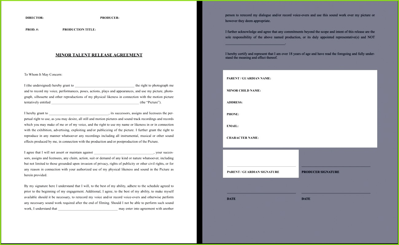 Swimming Pool Waiver Release Form Fresh Download Zipline