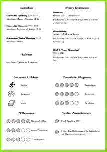 Diese CV Lebenslauf Folgeseite mit Icons rundet das Bild über den Bewerber umfassend ab