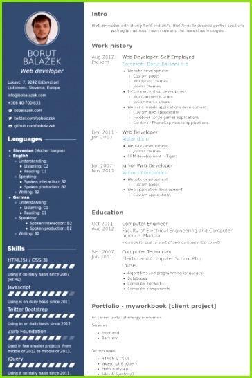 web developer self employed Resume example