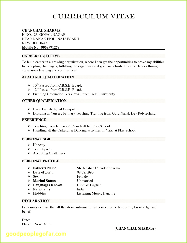 Cv Resume Example Doc Valid Resume Template Doc New Resume Doc 0d Inspirierend Korrekter Lebenslauf