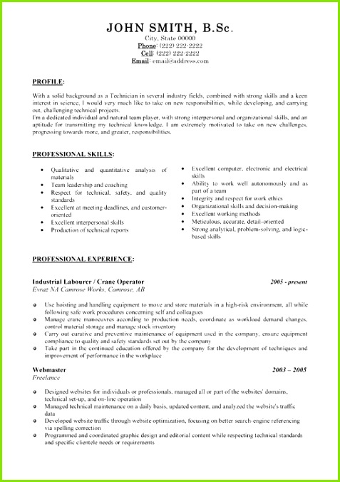 Resume Templates 101 Resume Templates 101 Format For Resume For … Premium Resume Templates and Sampl