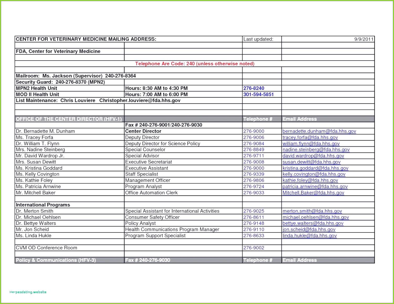 54 Wunderbare Modelle Der Besprechungsprotokoll Vorlage Excel