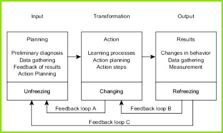 Action research in organization development[edit]