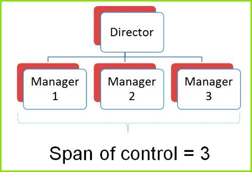 Narrow span of control