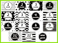 Printable Baby Cards Monochrome Milestone Cards Baby Timeline Baby s First Year Download Newborn Cards Baby