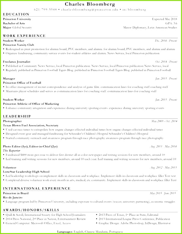 Professional Resume Writers line Professional Resume Writing Services Chicago Awesome 30 Fresh Professional Resume