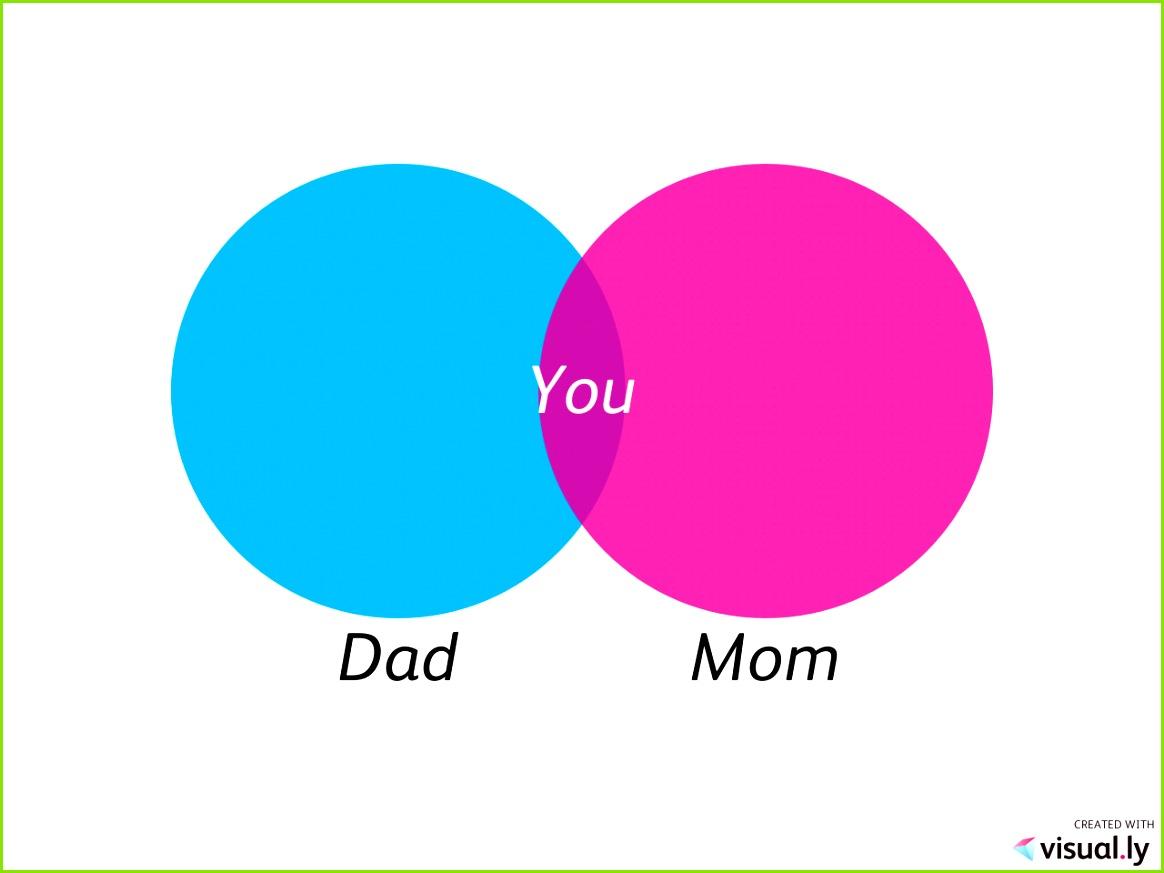 Venn Diagramme