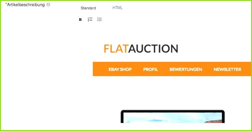 Ebay Description HTML Template Inspirational Ebay HTML Template Example 1000 About Ebay Auktionsvorlagen