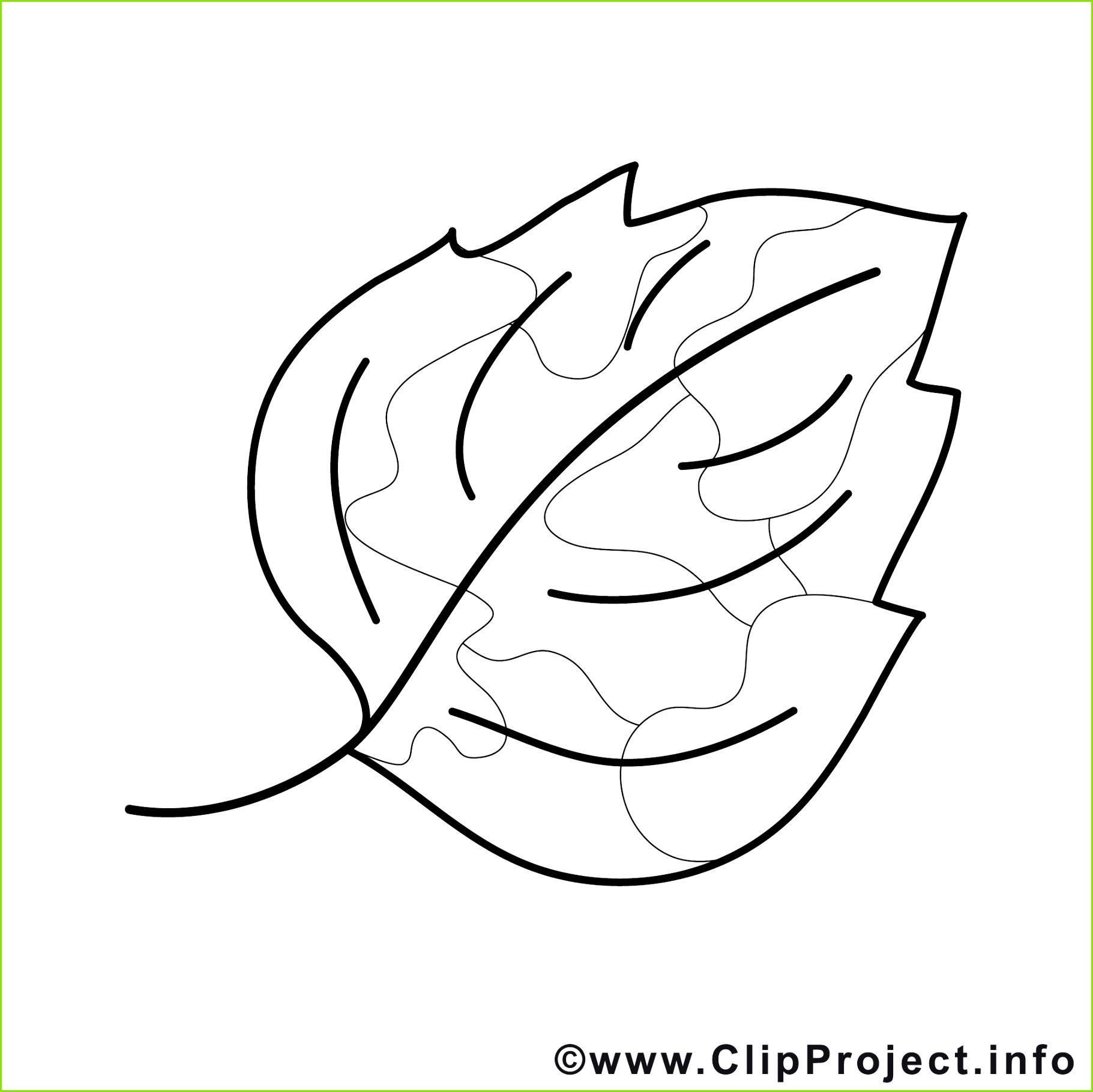 ausmalbilder gratis fr kinder window color vorlagen zum ausdrucken of malvorlage palme kostenlos