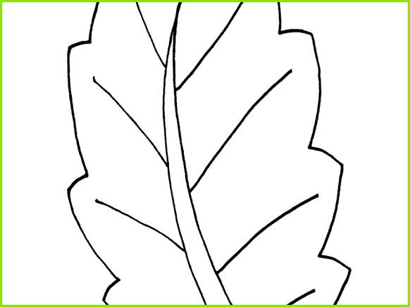 Igel Vorlage Zum Ausdrucken Ausmalbilder Malvorlagen – Blätter Kostenlos Zum Ausdrucken