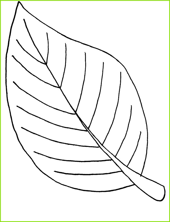 Ausmalbilder Malvorlagen – Blätter kostenlos zum Ausdrucken