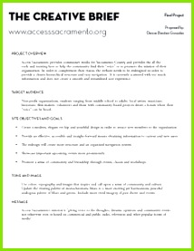 Project Creative Brief