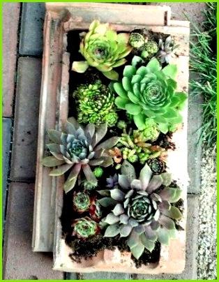 Alte Dachziegel als Gartendeko nutzen old roofing tile as garden decoration