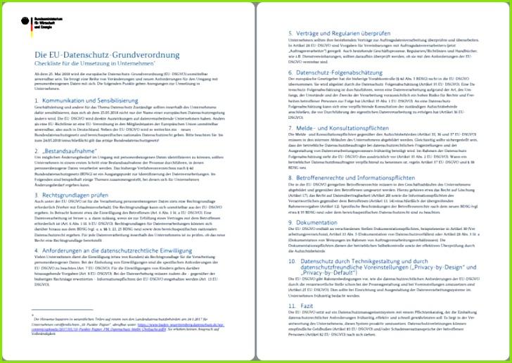 Auf zwei Seiten bietet Euch Datenschutz Grundverordnung 2018 Checkliste alle relevanten Punkte im überblick Screenshot Redaktion