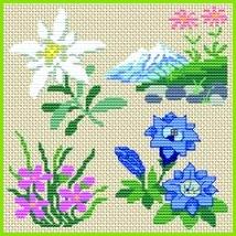 grille point de croix edelweiss