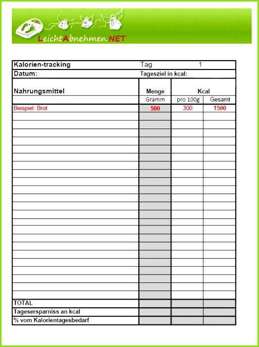 Ernährungstagebuch als PDF Vorlage zum Download – kostenlos