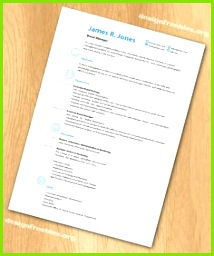 Free InDesign resume cv template 3 Adobe Indesign Indesign Resume Template Cv Template
