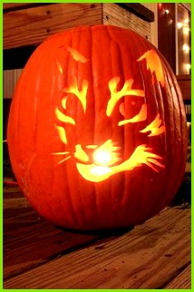 If you re looking for some fun cat pumpkin carving ideas to make your jack o lantern cat tastic here are 13 of our favorites