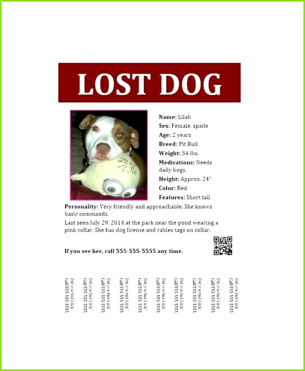 Lost Dog Flyer Template 07