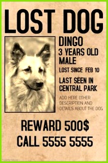 Lost dog lot pet old style poster template postermywall PosterMyWall
