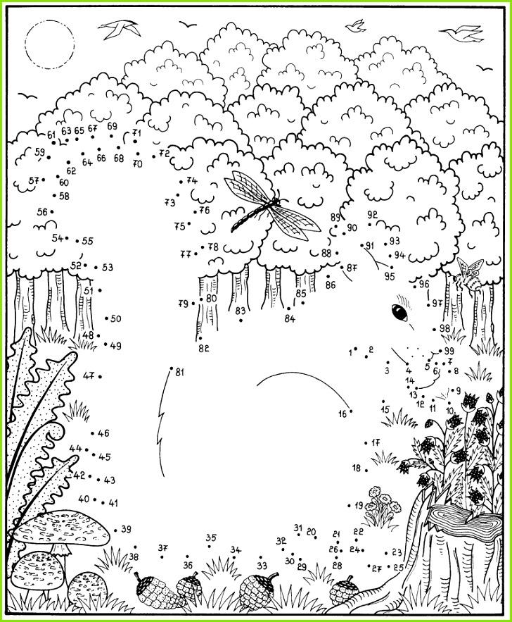 Ausmalbild Malen nach Zahlen Malen nach Zahlen Eichhörnchen kostenlos ausdrucken