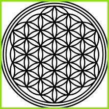 Wandtattoo Aufkleber Blume DES Lebens Mandala Heilige Geometrie Feng Shui