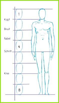 Ectomorph Ectomorphic Porportions Male Study Template