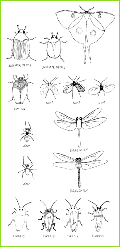 insect drawings mixing two things ex bugs and light bulbs