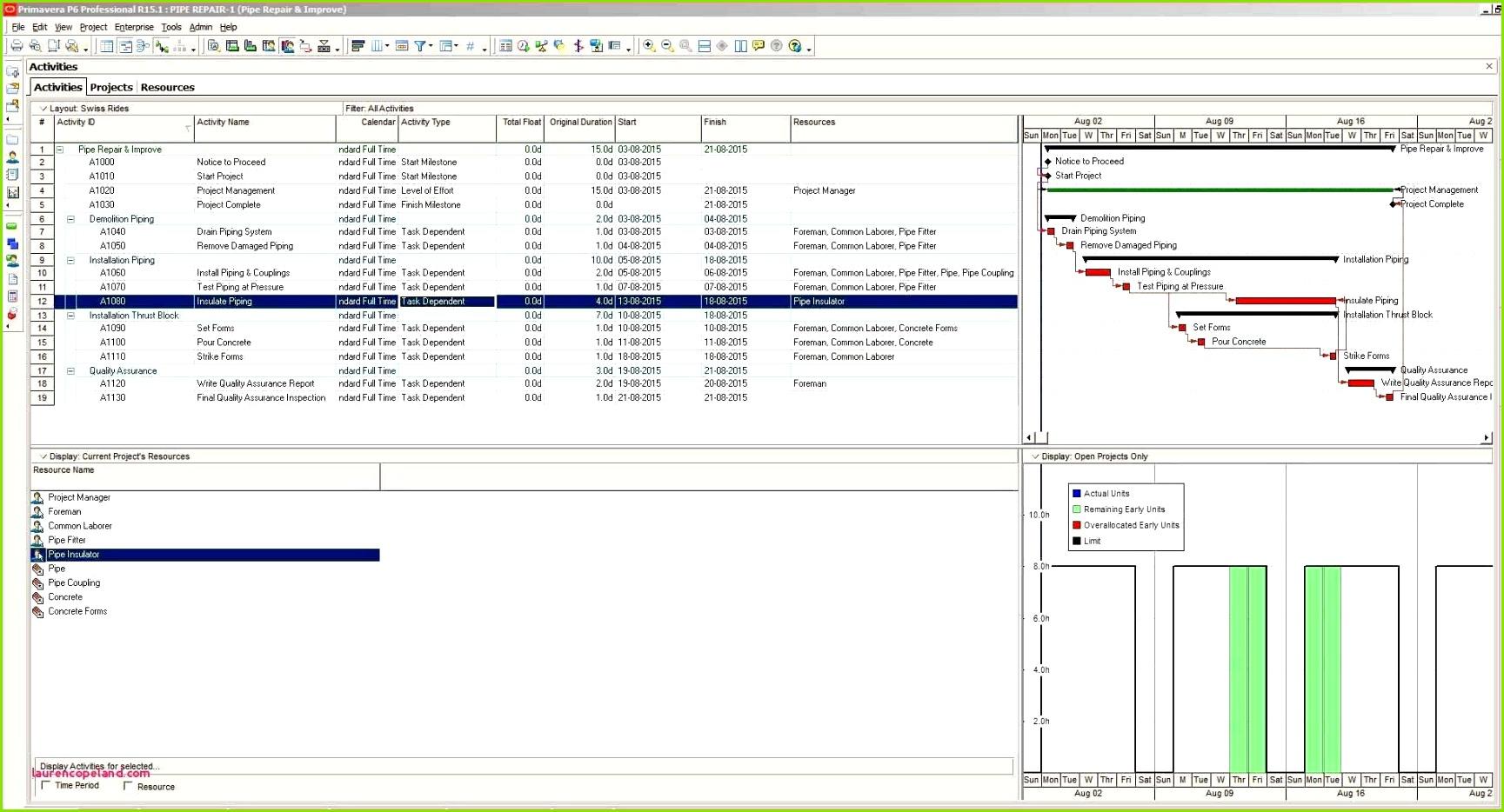 Projektmanagement Excel Vorlage Microsoft Vorlagen Laurencopeland Riesige Keyword Projektmanagement