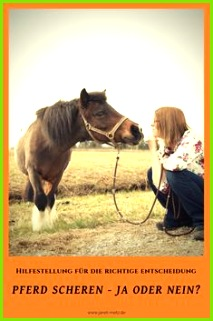 Pferd scheren ja oder nein