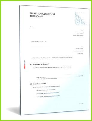 Selbstschuldnerische Bürgschaft PDF [Download]