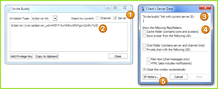 This feature is for finding stuff in your TeamSpeak 3 configuration folder and is meant to be used with servers you don t have query access for