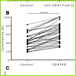 Figure 1 Variability in neutrophil ADCC toward Trastuzumab coated SKBR3 cells Neutrophils from