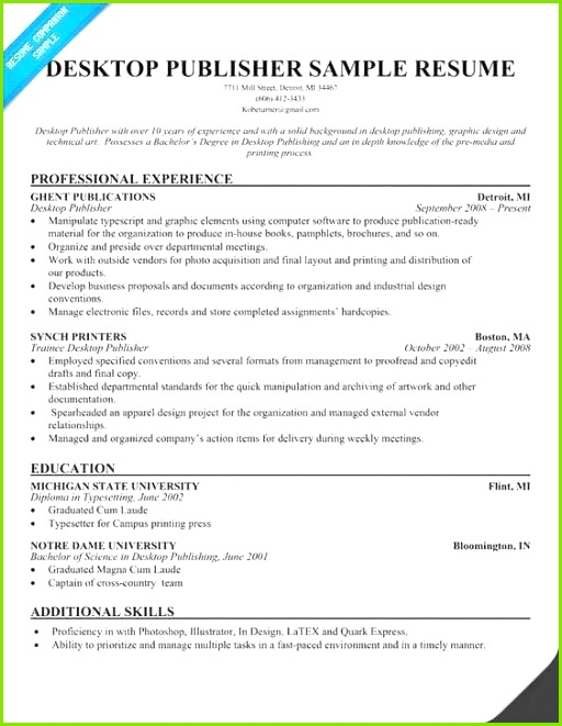 Word format Resume Free Download Luxury Resume Examples Word Professional Resume Examples 0d Best Resume