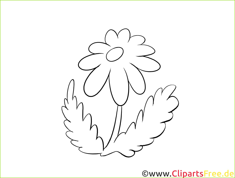 Vorlagen Für Laubsägearbeiten Für Kinder Kostenlos Süß Holzarbeiten Vorlagen Kostenlos Blume Kamille