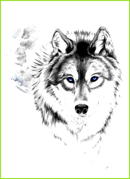 6 wolf vorlage meltemplates meltemplates. Black Bedroom Furniture Sets. Home Design Ideas