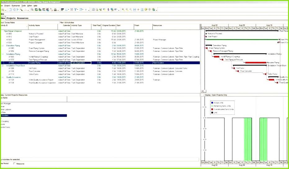 Excel Vorlage Lagerbestand Design Excel Projektplan Erstellen Einzigartig Automatische Vorlage] 100