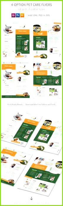 Pet Care Flyers 6 4 Options Templates PSD Vector EPS InDesign INDD