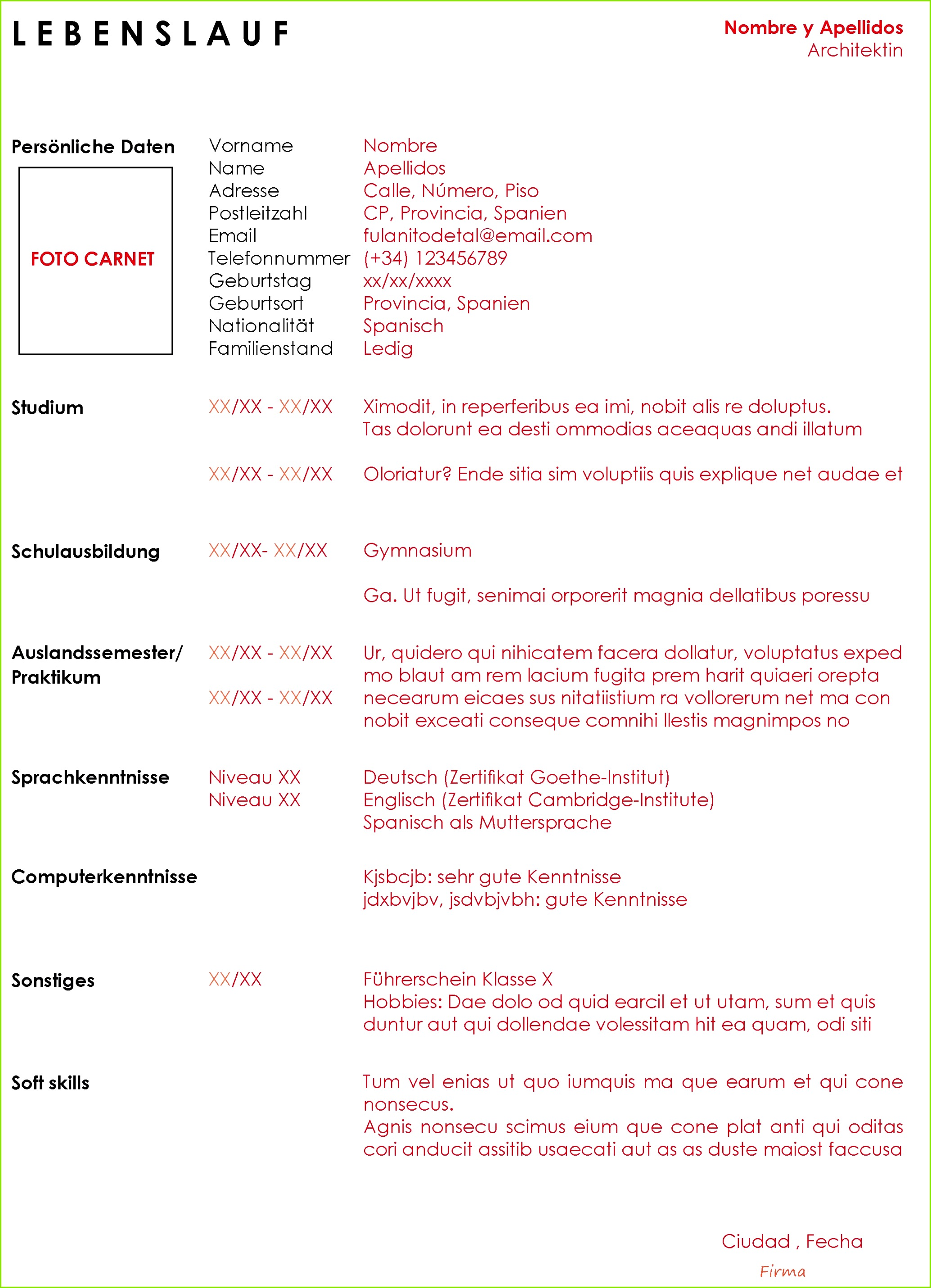motivationsschreiben studium muster pdf gemalde lebenslauf muster vorlage manager 1 beispiel motivationsschreiben of motivationsschreiben studium muster pdf