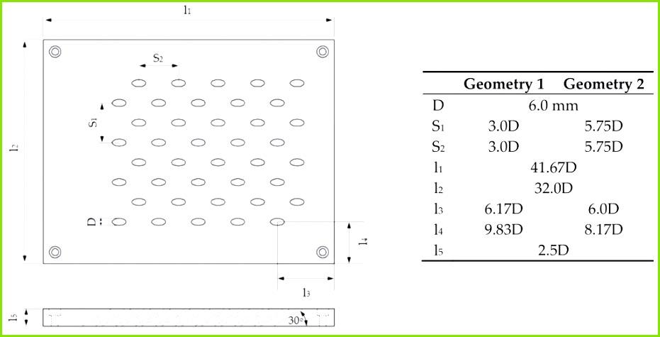 Mikroskopische Zeichnung Vorlage 15 Deckblatt Biologie Klasse 5