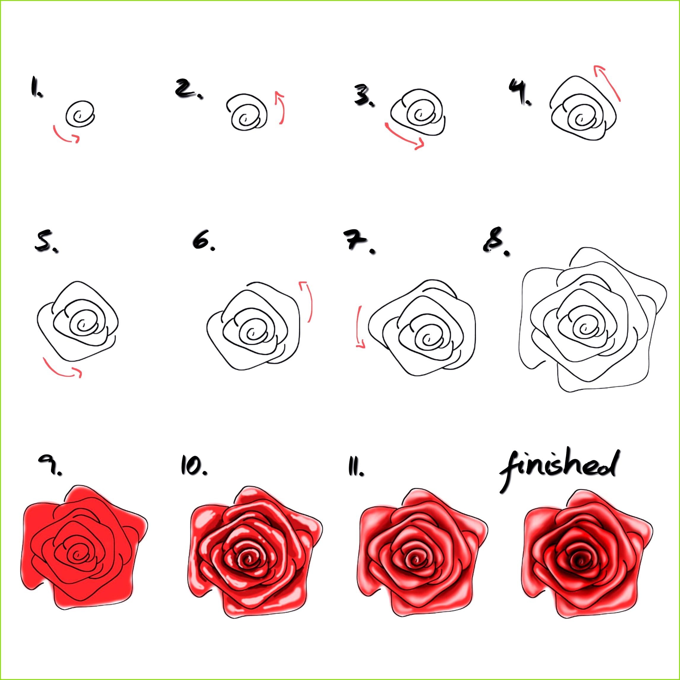 rose malen für anfänger wie malt man eine rose