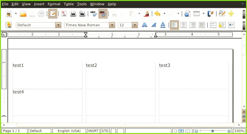 Abbildung 3 Der User tippt Beispieltexte in Tabellenfelder des Open fice Dokuments