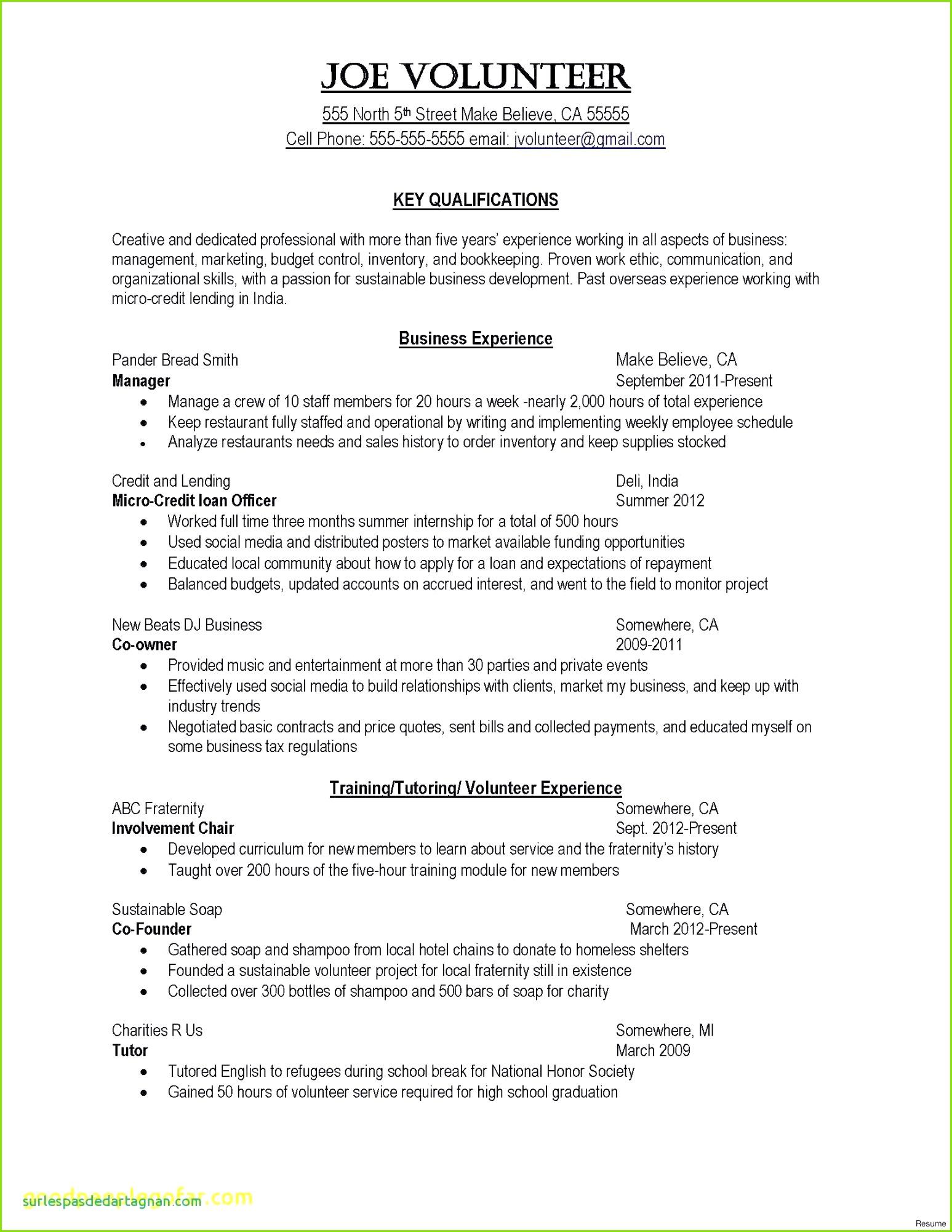 Sample College Application Resume Lovely Painter Resume 0d Luxury Marketing Plan Template