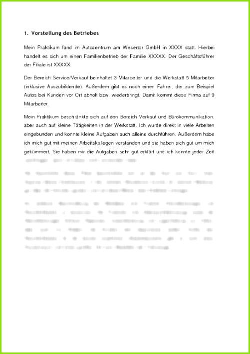 l23g0mltL praktikumsbericht automobilindustrie mitsubishi